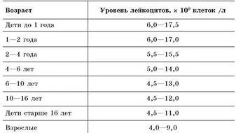 таблица лейкоцитов